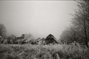 Hoar frost and a thatched library. Sussex, 2010