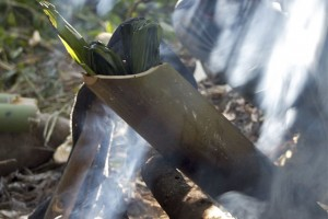 We baked rice, fish and vegetables in fresh-cut bamboo over an open fire during our walks in Namdapha.